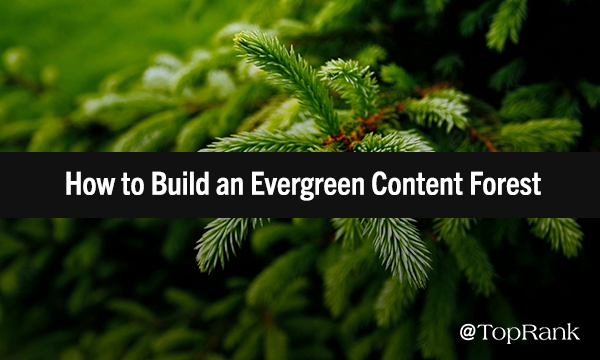 Evergreen Content Marketing