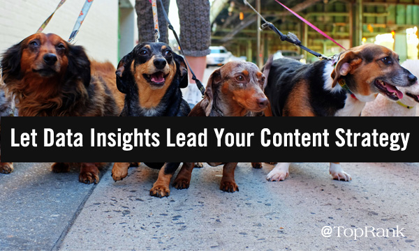 Let Data Insights Business lead Your Content Marketing Strategy