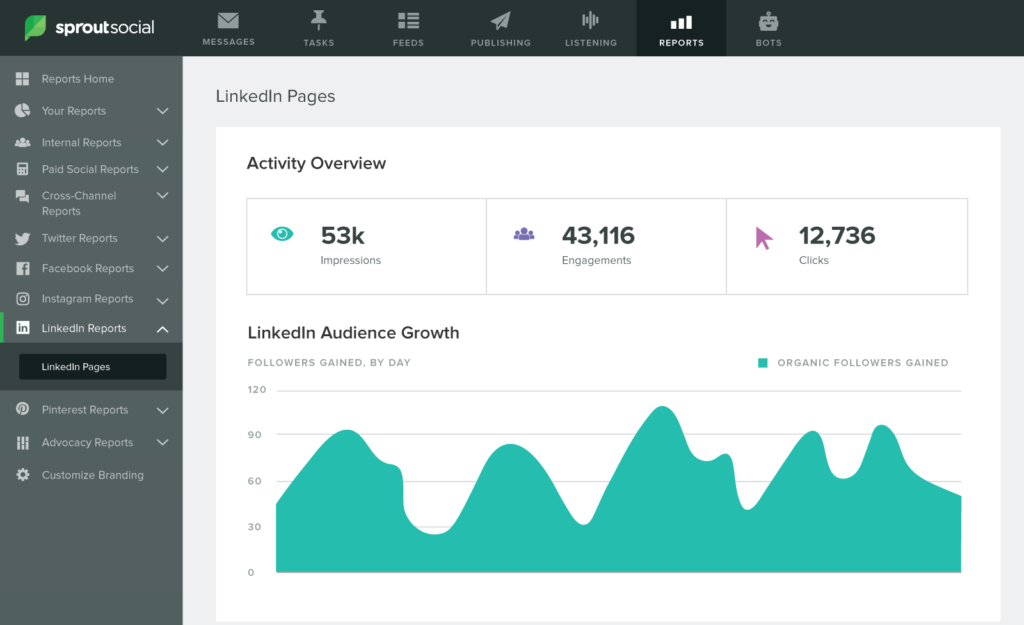 sprout linkedin pages report