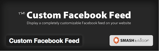 Example of Custom Facebook feed button