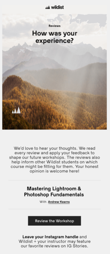feedback email for customer retention